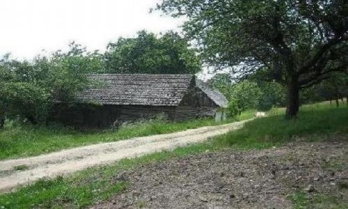 Zdjecie POLSKA / okolice Nowego Sącza / brak / opuszczona chata