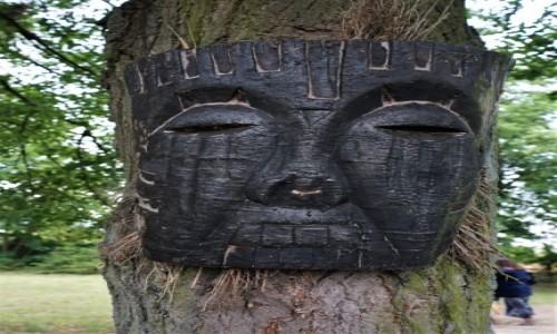 Zdjecie POLSKA / Prabuty / Rodowo - Wioska Cudów / Twarz drzewa