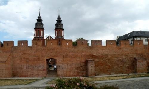 POLSKA / opolskie / Opole / Fragmenty murów obronnych