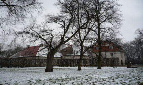 Zdjecie POLSKA / Mazowsze / Nieborow / w sniegowej szacie