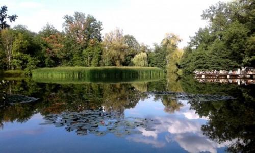 Zdjęcie POLSKA / opolskie / Opole / Piknik nad wodą