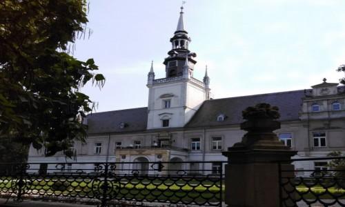 Zdjecie POLSKA / opolskie / Tułowice / Pałac od strony parku