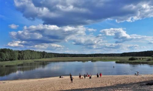 Zdjęcie POLSKA / Roztocze / Roztoczański Park Narodowy, staw Echo (Zwierzyniec) / szukając chłodu...