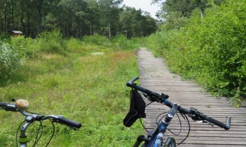 POLSKA / Bałtyk / Polska / Jak przejechać rowerem z Trójmiasta do Ahlbeck