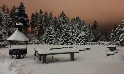 Zdjecie POLSKA / Małopolska  / Zakopane  / Magiczne miejsce w Zakopanem