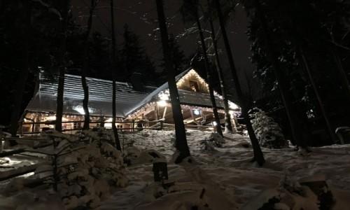 Zdjecie POLSKA / Małopolska  / Zakopane  / Magiczna zima Zakopane