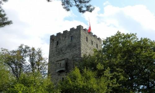 Zdjecie POLSKA / małopolskie / Wytrzyszczka / Wieża zamku Tropsztyn