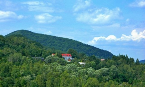 Zdjecie POLSKA / podkarpackie / Solina / Zielone wzgórza