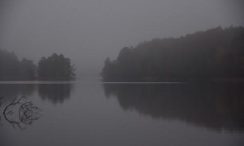 Zdjecie POLSKA / Drawieński Park Narodowy / Jezioro Marta / Jezioro i mgła