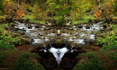 Zdjecie POLSKA / Zakopane / Tatrzański Park Narodowy / Jesień w Zakopanem....