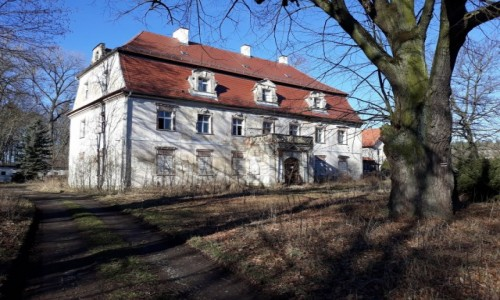 Zdjecie POLSKA / Dolny Śląsk / Rynarcice, Gmina Rudna / Pałac w Rynarcicach