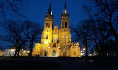 Zdjecie POLSKA / Kujawy / Włocławek / Katedra pw Wniebowzięcia Najświętszej Marii Panny we Włocławku