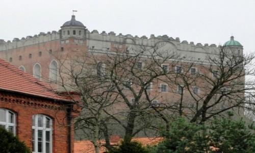 Zdjecie POLSKA / kujawsko-pomorskie / Golub - Dobrzyń / Z widokiem na zamek