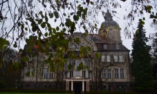 Zdjecie POLSKA / Warmińsko-Mazurskie / Łężany / Pałac rodu von Fisher-Lossainen
