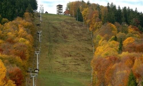 POLSKA / dolnoślaskie / Boguszów, Góra Dzikowiec / Stok narciarski w jesiennych barwach.