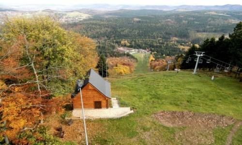 Zdjecie POLSKA / dolnoślaskie / Boguszów, Góra Dzikowiec / Widok ze szczytu.