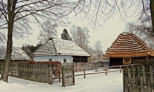 POLSKA / Podkarpacie / Kolbuszowa/Park Etnograficzny /