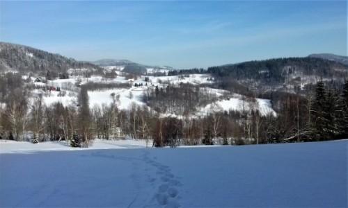 POLSKA / Dolny Śląsk / Rudawski Park Krajobrazowy / gdzie jest śnieg??
