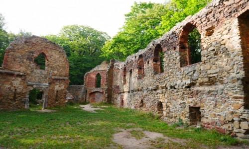 POLSKA / dolnośląskie / Wałbrzych / Ruiny Starego Zamku w Książu