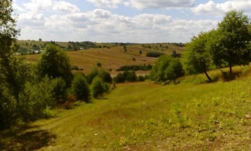POLSKA / Roztocze / Roztoczański Park Narodowy / Widok z Bukowej Góry
