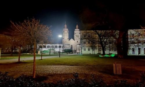 CZECHY / kraj morawsko-śląski / Karniów Krnov / Fragment parku