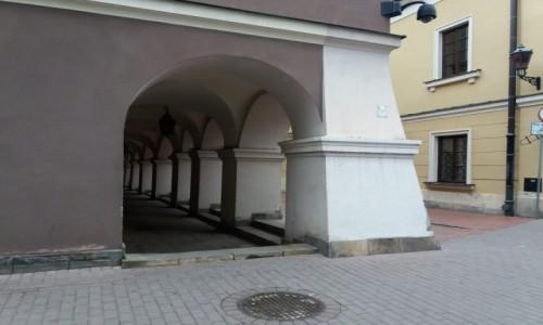 Zdjęcie POLSKA / Zamojszczyzna / Zamość / Zamojskie podcienia