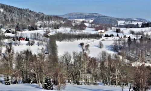 POLSKA / Dolny Śląsk / Rudawski Park Krajobrazowy / śnieg, śnieg, śnieg...