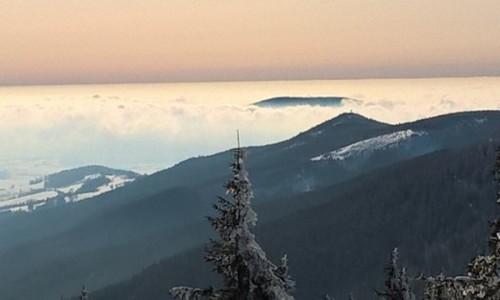 POLSKA / dolnośląskie  / Śnieżnik  / Wyspa na morzu chmur
