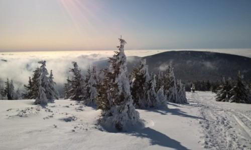 POLSKA / dolnośląskie  / Śnieżnik  / Co to będzie!? Morze chmur przerwało wał!
