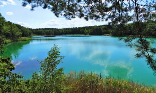 POLSKA / Lubuskie / Geopark Łuk Mużakowa, tereny dawnej kopalni odkrywkowej Babina / magicznie i kolorowo...