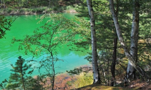 Zdjecie POLSKA / Lubuskie / Geopark Łuk Mużakowa, tereny dawnej kopalni odkrywkowej węgla brunatnego