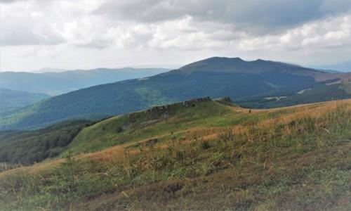 Zdjecie POLSKA / Bieszczady / na szlaku Wołosate - Halicz - Tarnica - Wołosate / malownicza różnorodność...