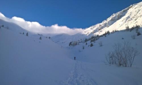 Zdjecie POLSKA / Tatry / Kopa Kondracka / Chmura czy mgławica śniegu na grani...