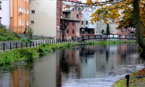 Zdjecie POLSKA / Kujawy / Bydgoszcz / Bydgoska Wenecja.