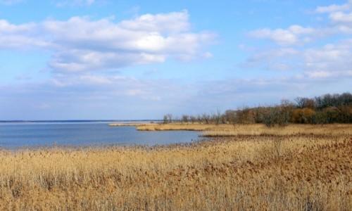 Zdjecie POLSKA / opolskie / Turawa / Jeszcze jedno sojrzenie na jezioro.