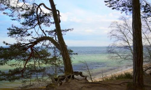 Zdjecie POLSKA / woj. pomorskie / okolice Sopotu / puste plaże Trójmiasta
