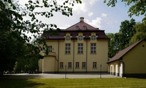 Zdjecie POLSKA / opolskie / Izbicko / Pałac od strony parku.