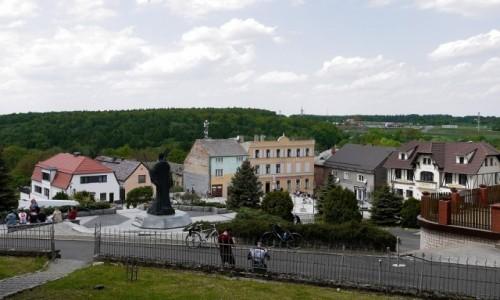 Zdjecie POLSKA / opolskie / Góra św. Anny / Widok na miejscowość