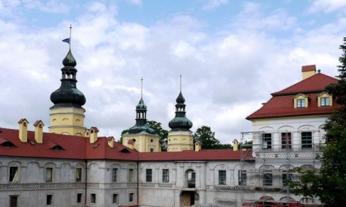 Zdjecie POLSKA / opolskie / Żyrowa / Pałac w odbudowie