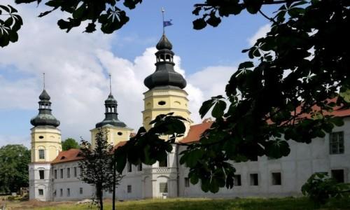 POLSKA / opolskie / Żyrowa / Pałac od strony murów zewnętrznych.
