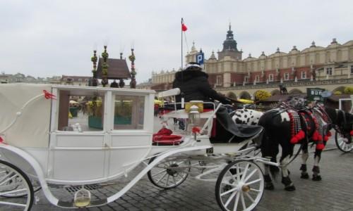 Zdjecie POLSKA / Kraków / Kraków / Rynek Sukiennice Dorożka