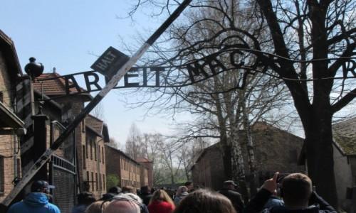 Zdjecie POLSKA / Oświęcim / Oświęcim / Auschwitz