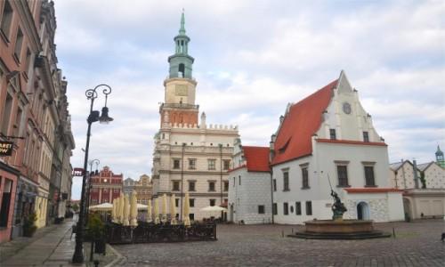 POLSKA / wielkopolskie / Poznań / Ratusz na Rynku w Poznaniu