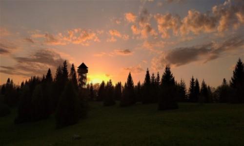 Zdjęcie POLSKA / Gorce / Magurka / Zachód słońca Magurka