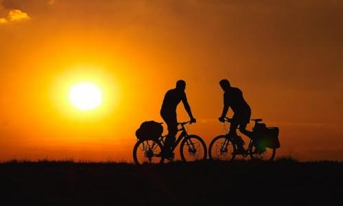 POLSKA / śląsk / pustynia Błędowska / w stronę słońca