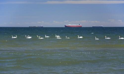 POLSKA / woj. pomorskie / Gdynia / bałtyckie jednostki pływające:)