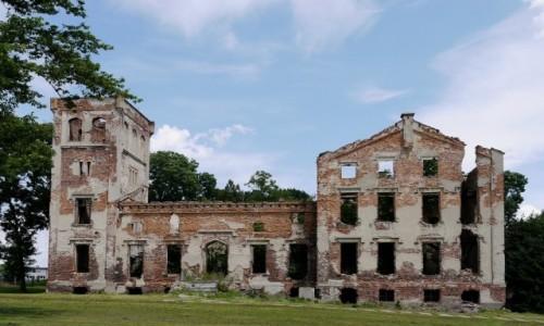 Zdjecie POLSKA / opolskie / Łany / Ruiny pałacu w Łanach, z 19 wieku.