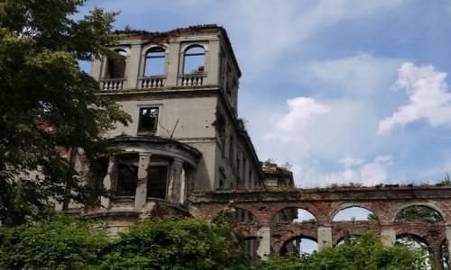 Zdjecie POLSKA / śląskie / Sławików / Ruiny malowniczego pałacu z 19 wieku