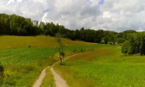 Zdjęcie POLSKA / Szwajcaria Kaszubska / Lipowiec / Krajobrazy Szwajcarii Kaszubskiej