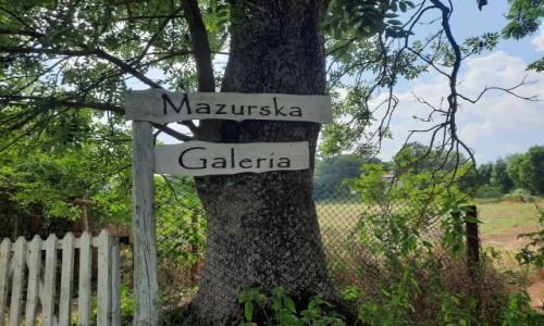Zdjecie POLSKA / warmińsko-mazurskie / Tuchlin / Mazury